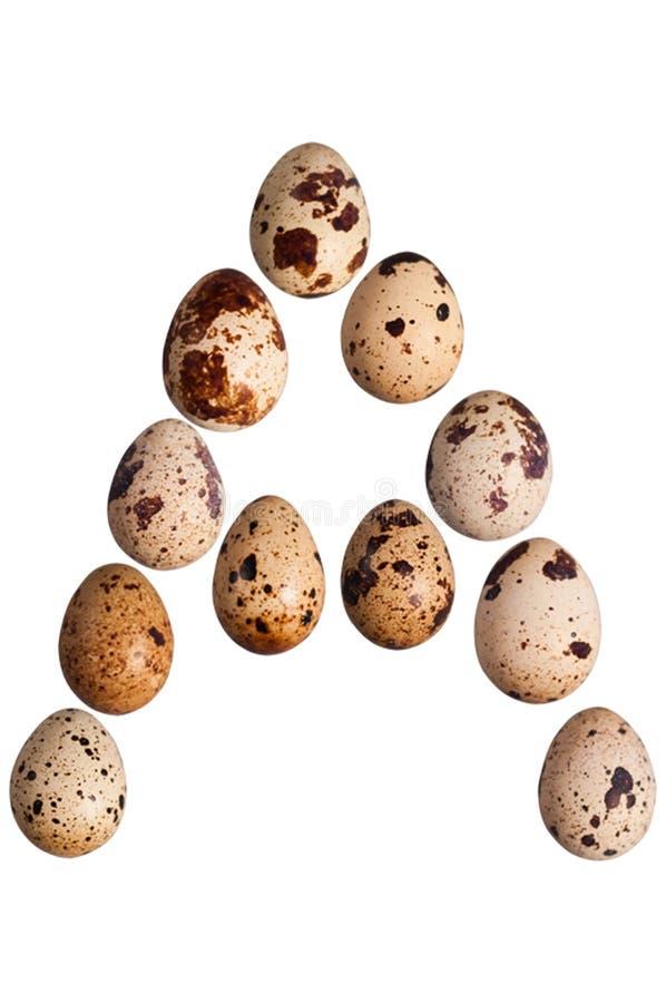 La letra A hizo de los pequeños huevos de codornices enteros manchados frescos fotografía de archivo