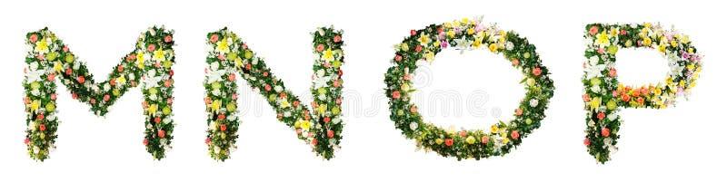 La lettera la m. LA N la O P dell'alfabeto ha fatto dai fiori variopinti isolati su w fotografia stock