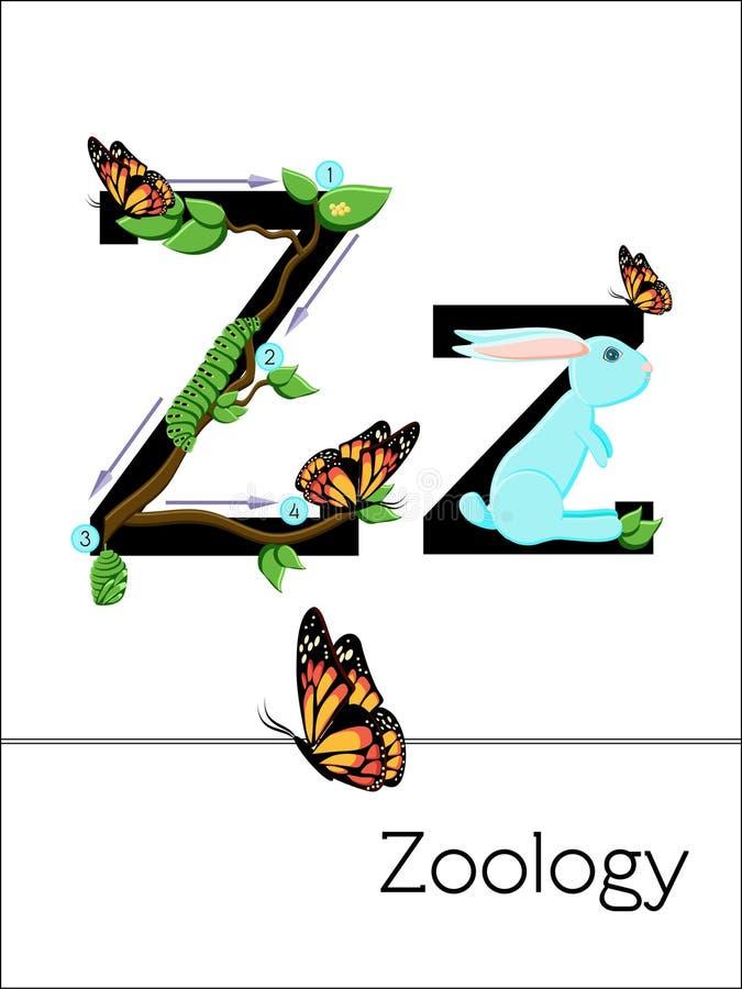 La lettera Z del flash card è per la zoologia illustrazione di stock