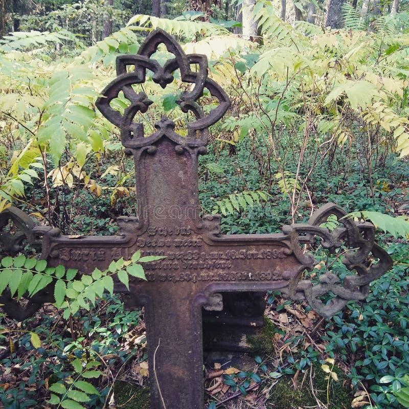 La Lettonie, vieux cimetière image libre de droits