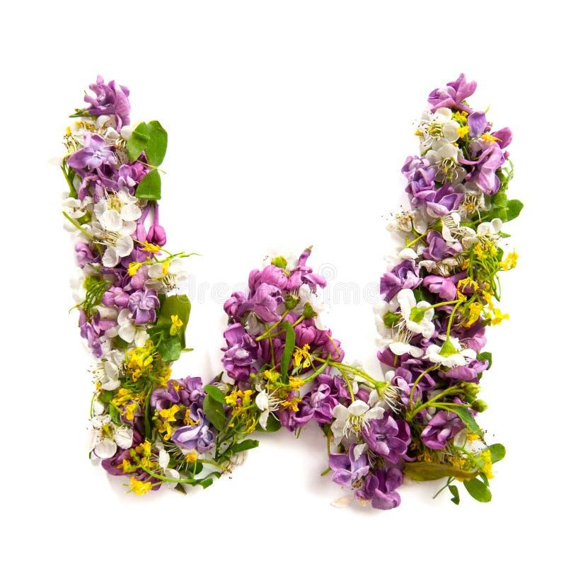 La lettre «W» a fait de diverses petites fleurs naturelles photos libres de droits