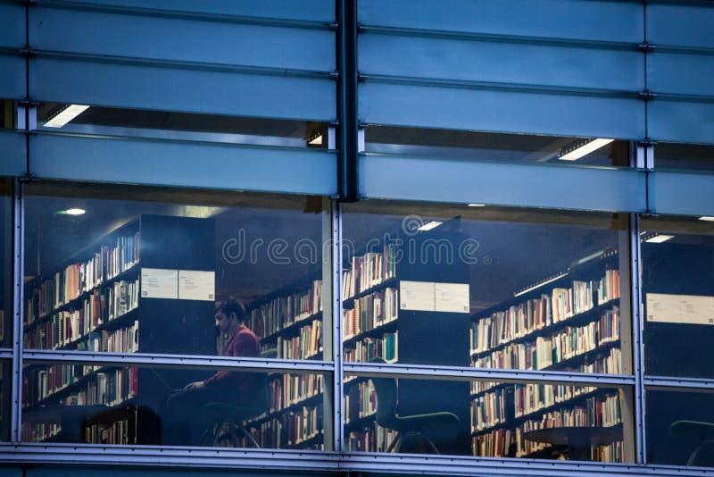 La lettura dell'uomo sul suo computer portatile in una delle stanze della biblioteca di Montreal, inoltre ha chiamato i nationale fotografia stock libera da diritti