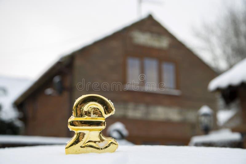 La libbra della gelata di prezzo della casa firma dentro la neve fotografia stock