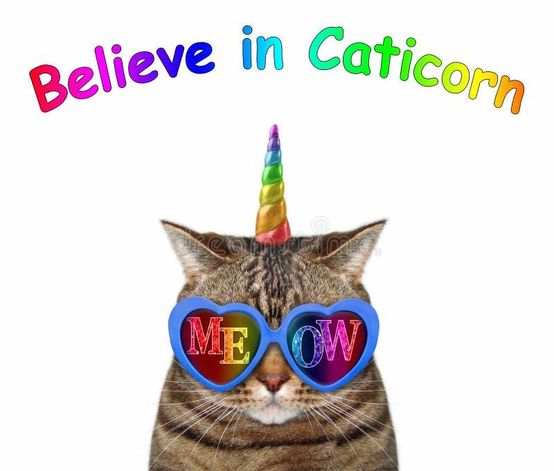 La licorne de chat utilise des lunettes de soleil de miaulement photos stock