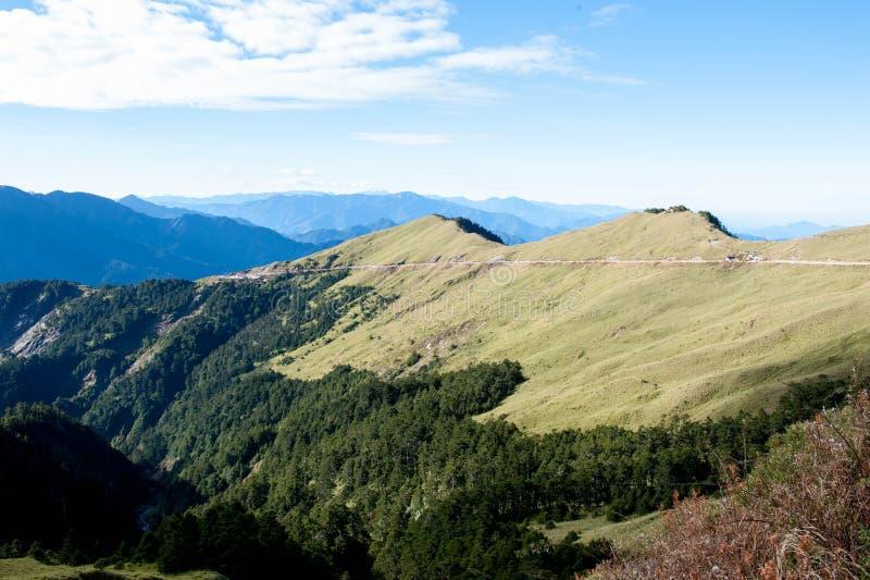 La ligne d'arbre de la montagne photographie stock