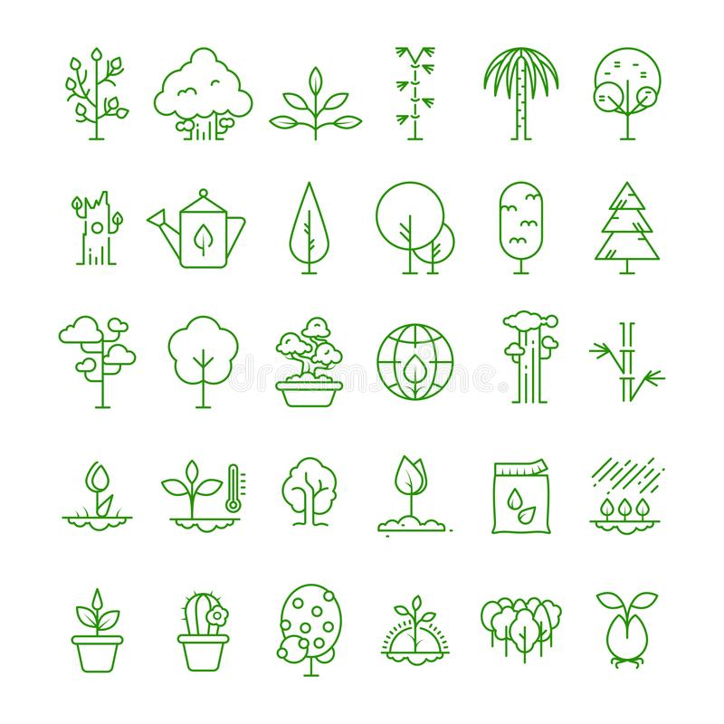 La ligne d'usine, de plantation, de graine et d'arbres dirigent des icônes Symboles croissants de pousse illustration libre de droits