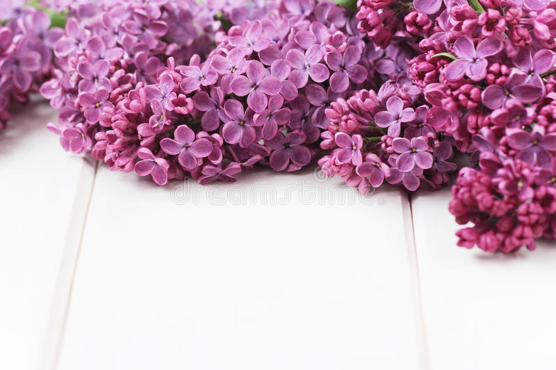 La lila florece el ramo imágenes de archivo libres de regalías