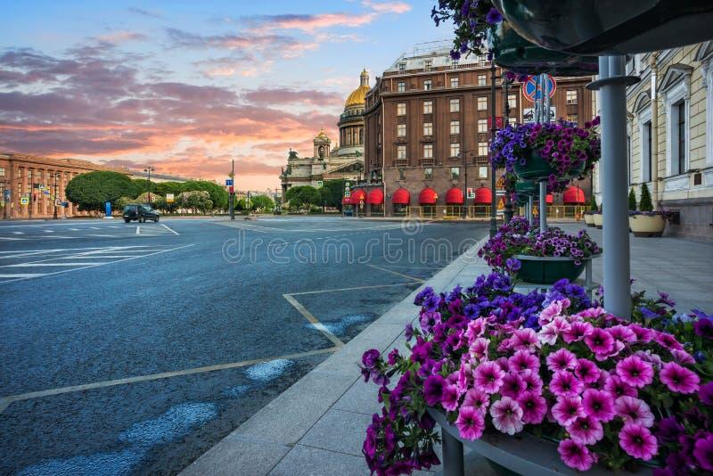 La lila florece en una cama de flor cerca de catedral del ` s del St Isaac en St Petersburg fotos de archivo libres de regalías