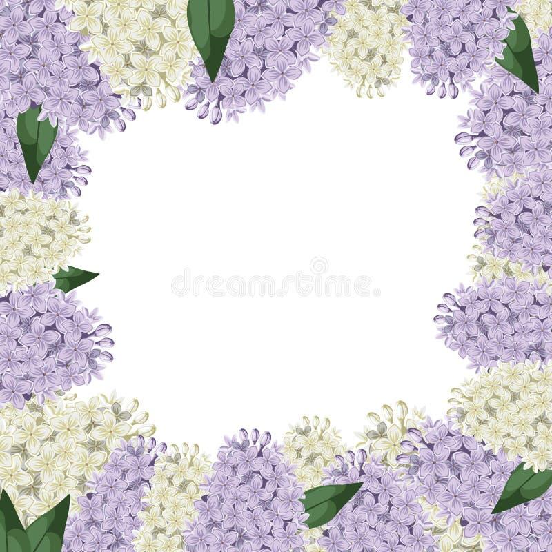 La lila florece la frontera libre illustration