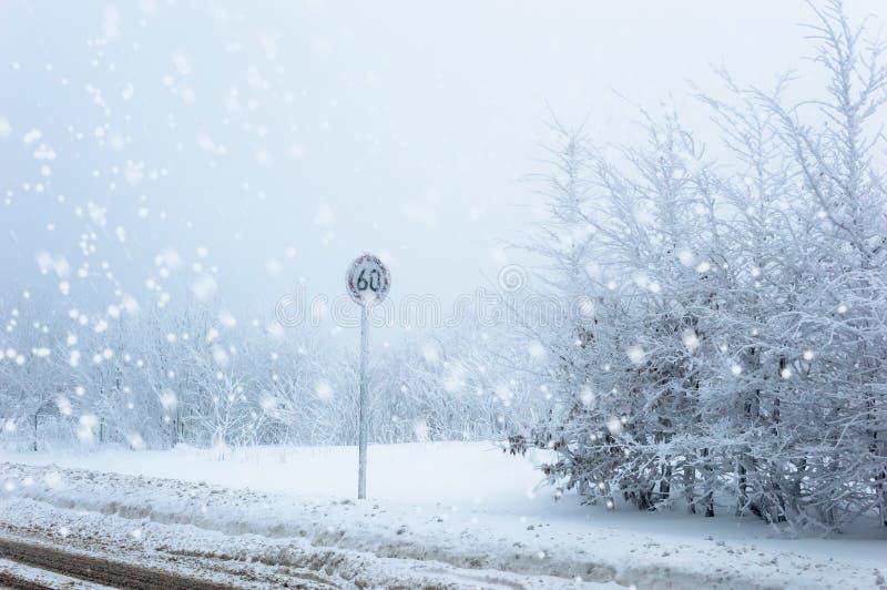 La limitation de vitesse congelée se connectent un fond neigeux d'hiver avec la neige en baisse images libres de droits