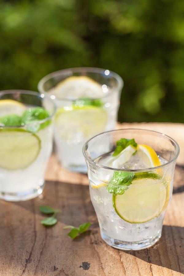 La limonata di rinfresco beve con il limone della calce della menta in giardino immagini stock