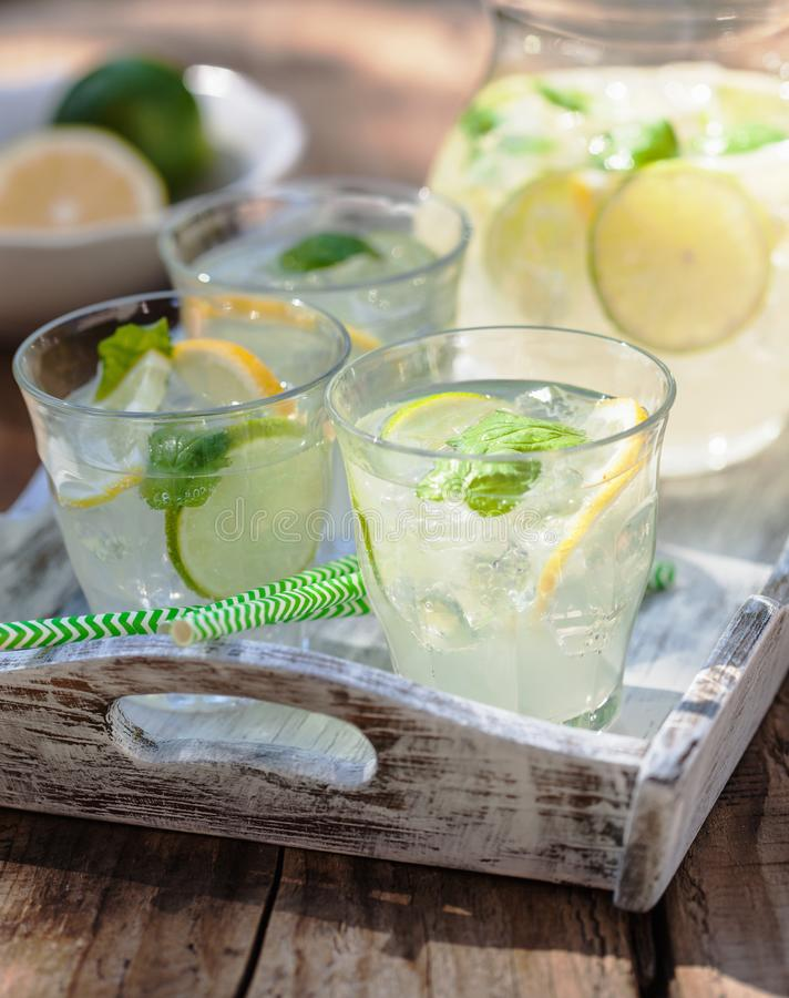 La limonata di rinfresco beve con il limone della calce della menta in giardino fotografia stock