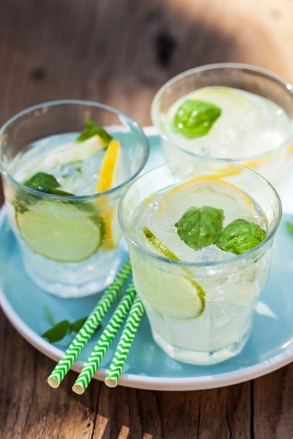 La limonata di rinfresco beve con il limone della calce della menta in giardino immagine stock libera da diritti
