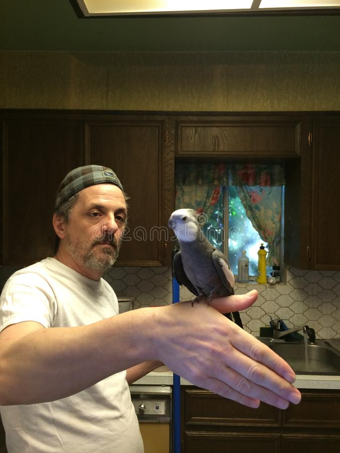 La limpieza está para los pájaros imágenes de archivo libres de regalías