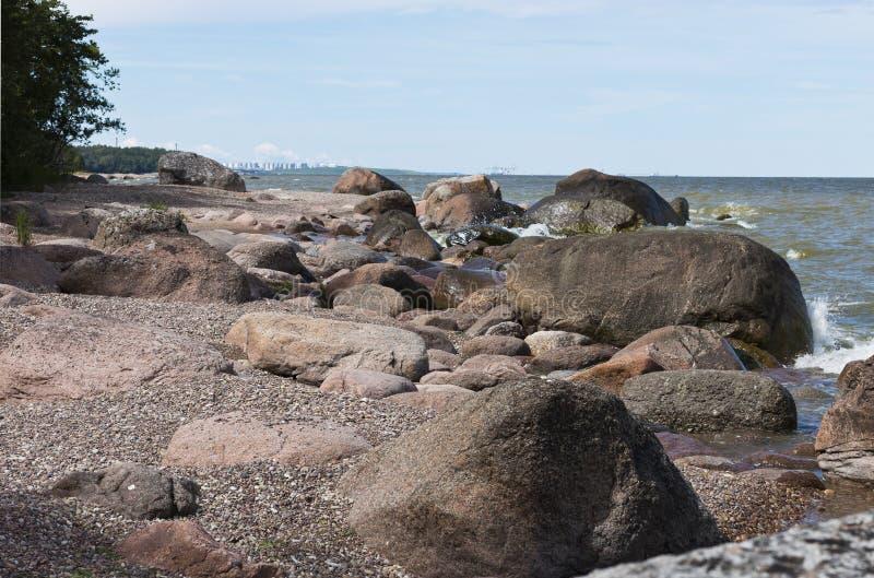La linea costiera selvaggia del Mar Baltico in Estonia del Nord vicino a Sillam immagini stock