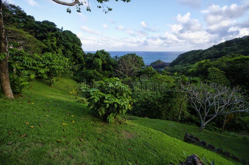 La linea costiera vicino al castello Bruce, Dominica, Lesser Antilles fotografie stock