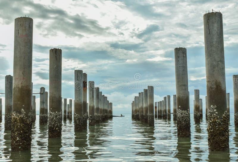 La linea di ceppi sul paesaggio della spiaggia immagine stock