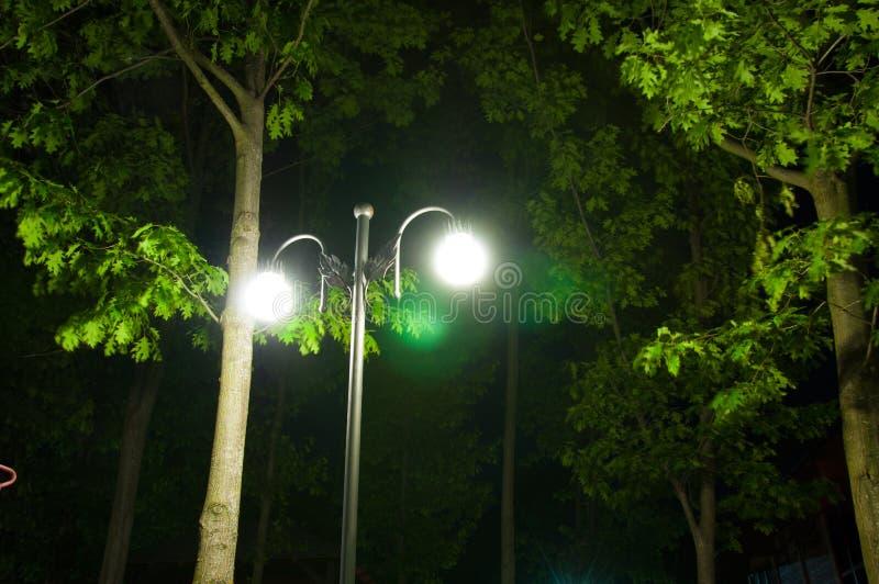 La linterna brilla en la oscuridad En el parque fotos de archivo