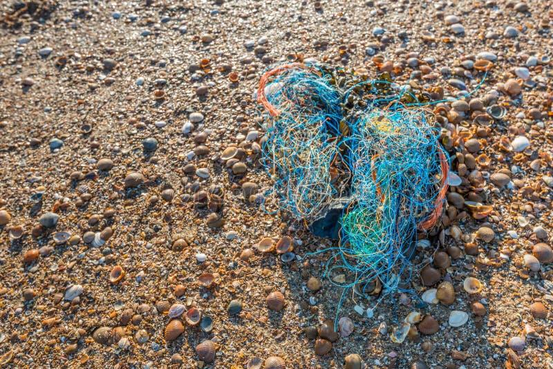 La litera se lavó para arriba en la playa del cierre foto de archivo libre de regalías