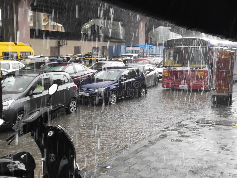 La lluvia de la lluvia sale imagen de archivo