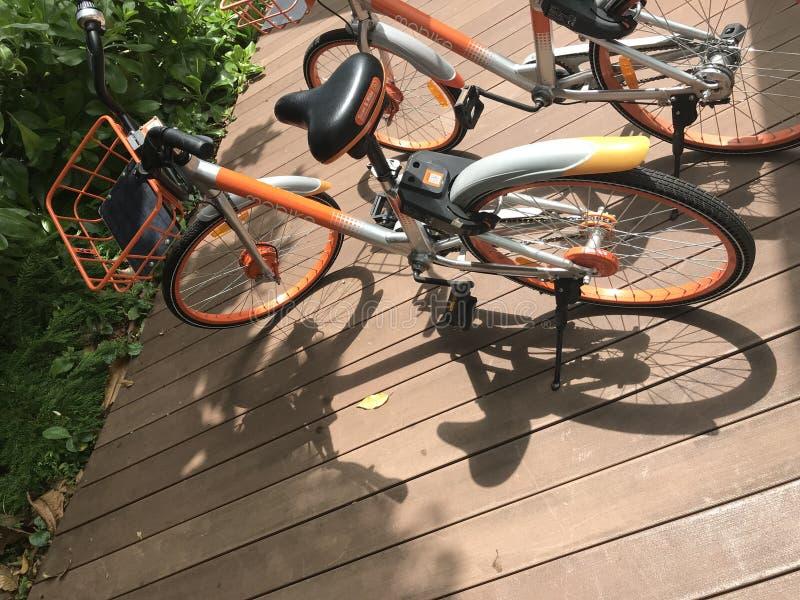 La location par marque mobile de ` de mobike de ` d'application va à vélo le stationnement sur le chemin en bois de promenade au  image stock