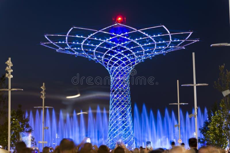 La longue photo de nuit d'exposition de la belle lumière et l'eau montrent de l'arbre de la vie images libres de droits
