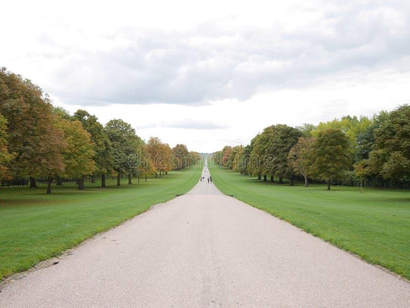 La longue promenade au grand parc R-U de Windsor photo stock
