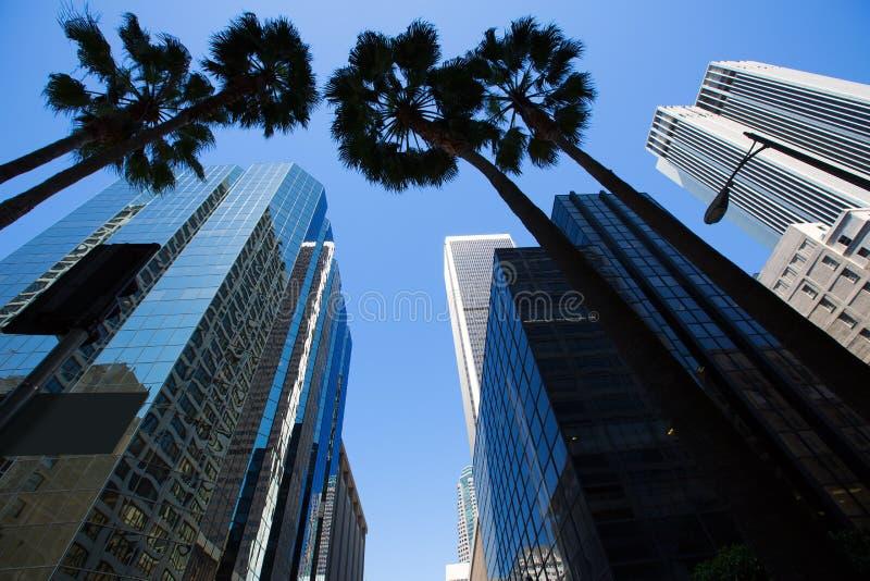 LA Los Angeles del centro con le palme immagini stock