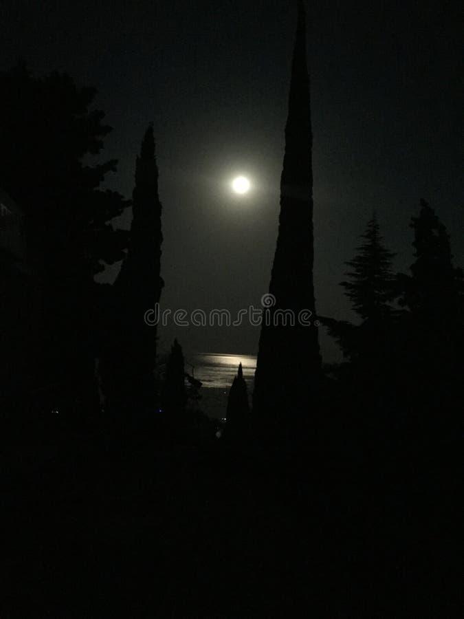 La luce della luna ed il mare fotografie stock