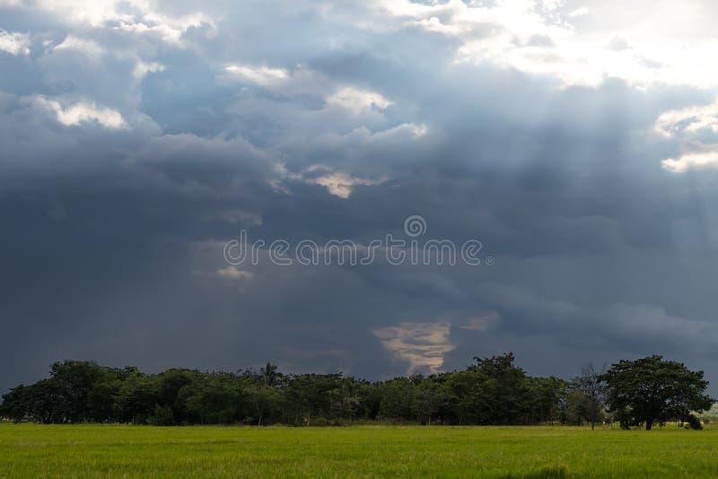 La lumière brille par des nuages au-dessus des arbres dans des domaines de riz photographie stock libre de droits