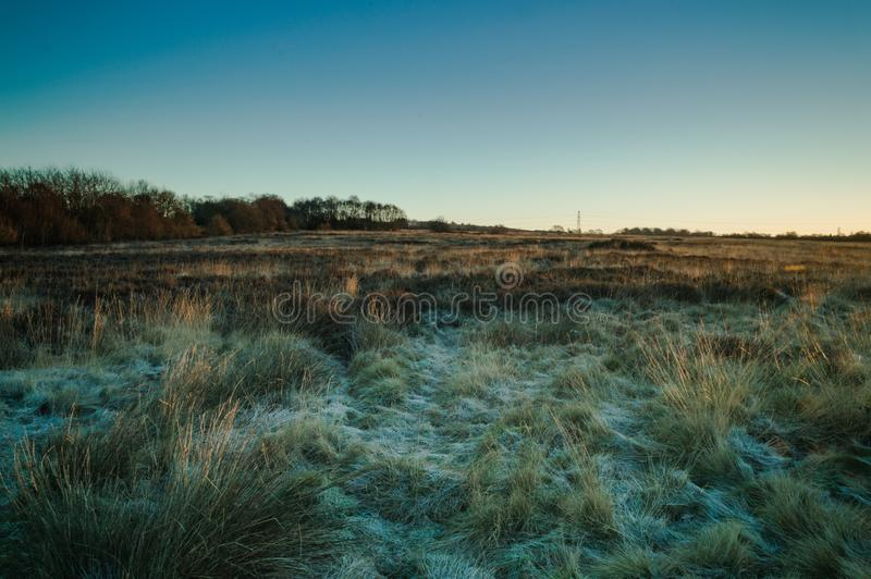 La lumière d'or d'aube se casse à travers le dessus de l'herbe sur un Wetley congelé amarrent photographie stock