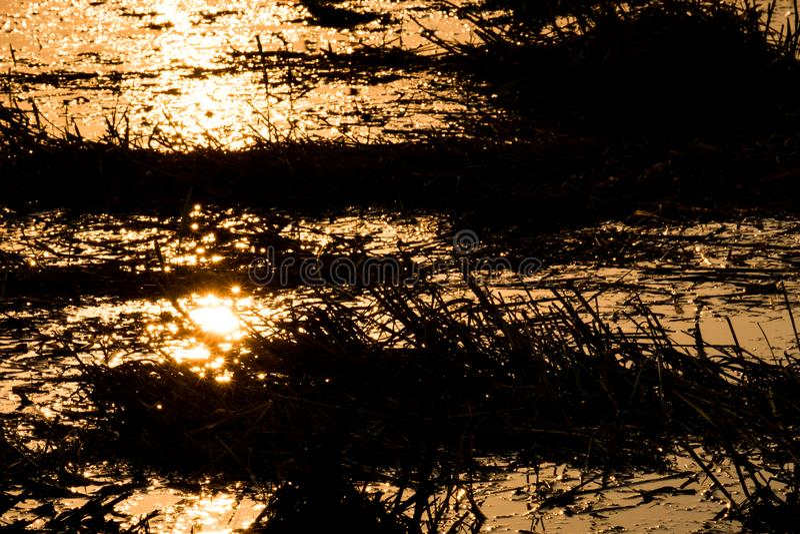 La lumière frappe l'eau, coucher du soleil le soir image stock