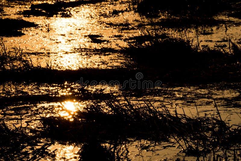 La lumière frappe l'eau, coucher du soleil le soir photographie stock libre de droits
