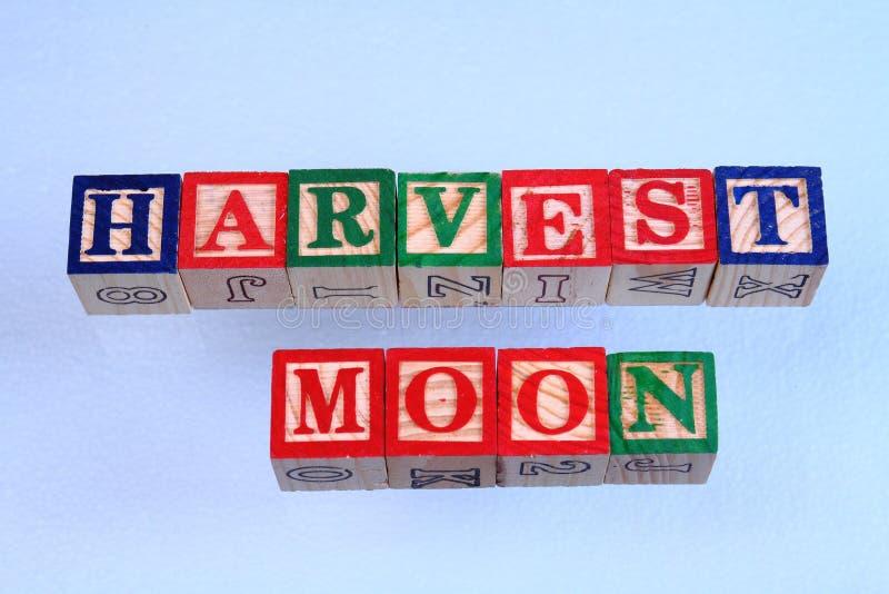 La luna de cosecha del término foto de archivo libre de regalías