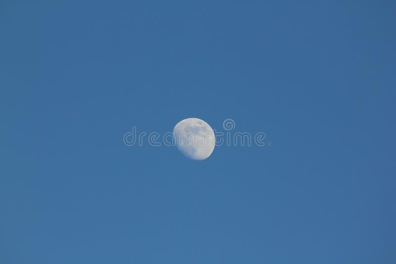 La luna di giorno fotografia stock