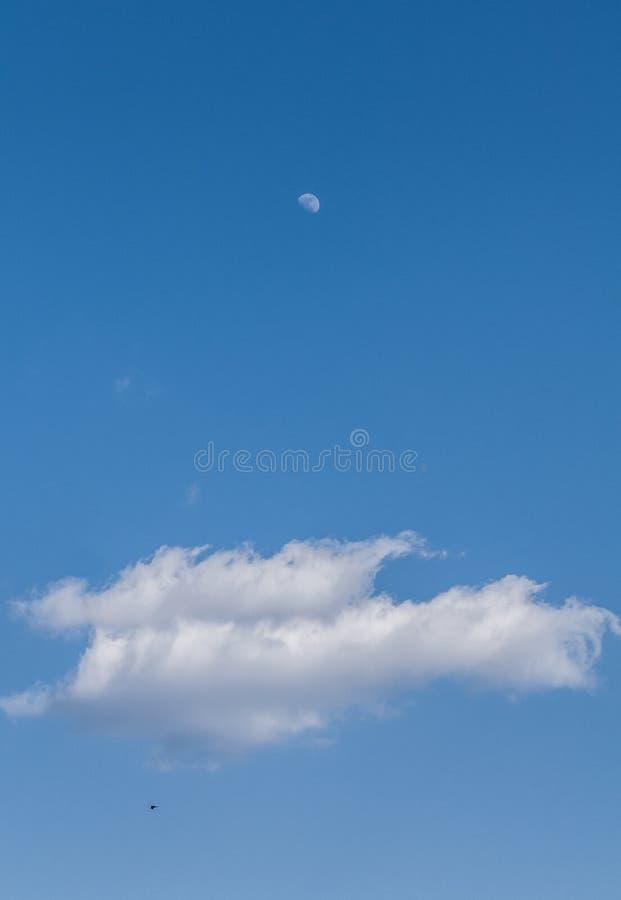 La luna, la nube y el pájaro foto de archivo libre de regalías