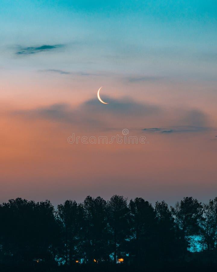 La luna más allá del seto fotografía de archivo