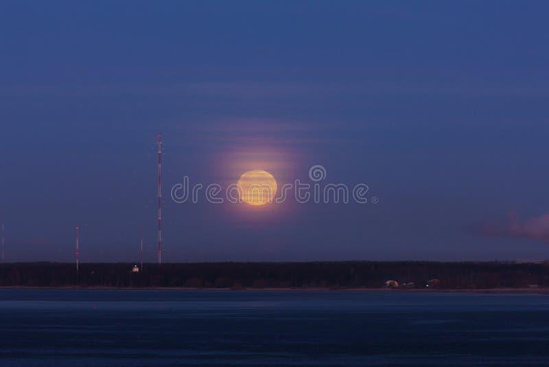 La lune d'imbécile de matin photographie stock libre de droits