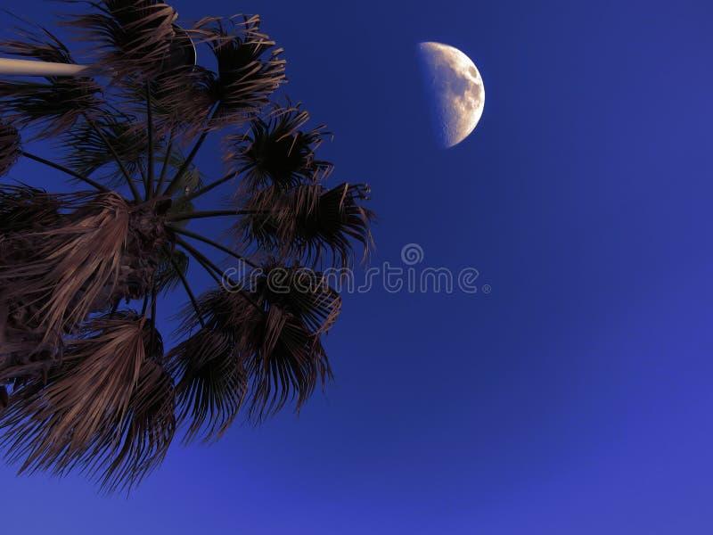 La lune est là ? image stock