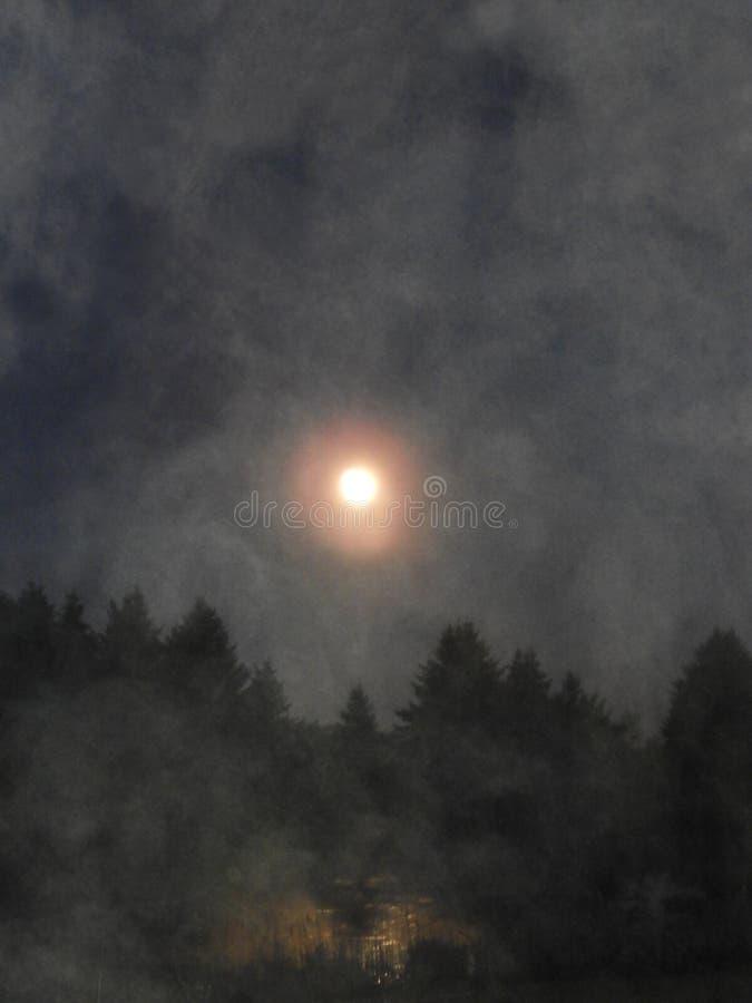 La lune s'est reflétée au-dessus de l'étang de pays couvert par brouillard photo libre de droits