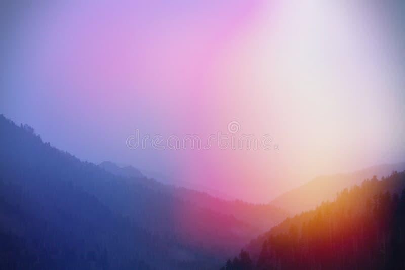 La luz del sol colorida artística irradia fotografía de la naturaleza en el parque de Great Smoky Mountains imágenes de archivo libres de regalías