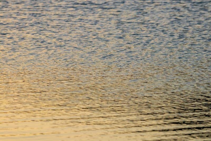 La luz del sol reflej? en la superficie del agua como el oro l?quido imágenes de archivo libres de regalías