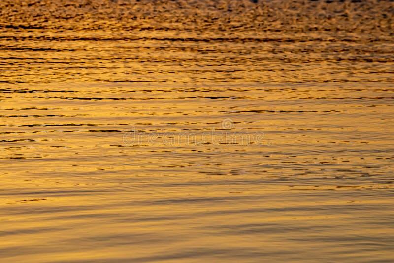La luz del sol reflej? en la superficie del agua como el oro l?quido fotografía de archivo libre de regalías
