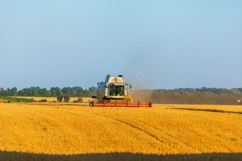 La máquina segador que trabaja en campo y siega trigo ucrania fotografía de archivo