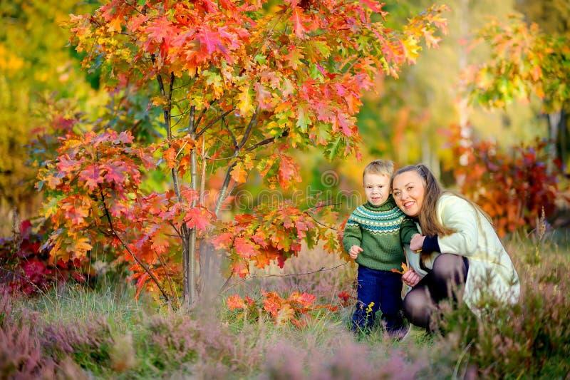 La mère marche avec son petit fils image libre de droits
