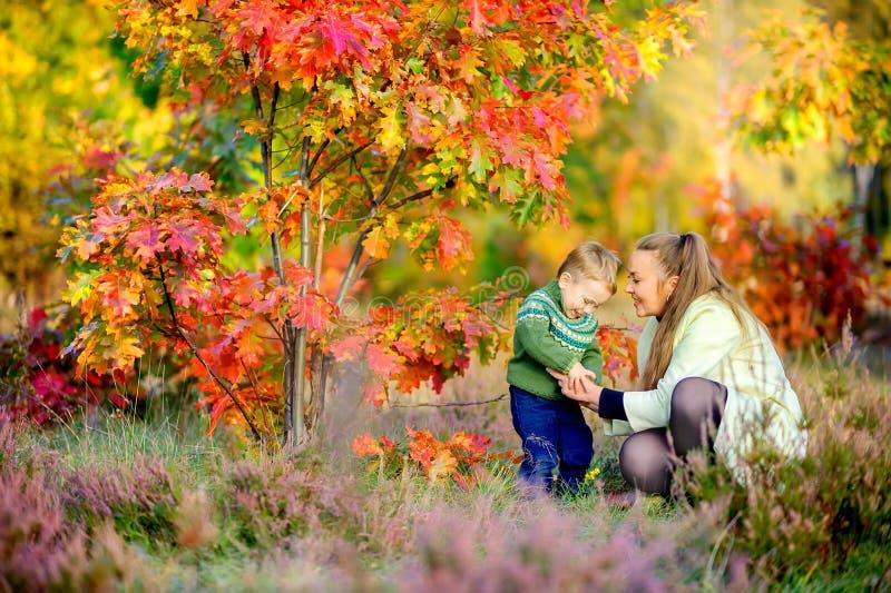 La mère marche avec son petit fils photo stock