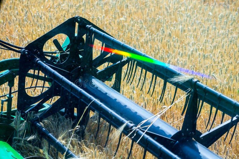 La macchina per effettuare i raccolti del grano - la mietitrebbiatrice nell'azione sul giacimento della segale al giorno di estat immagine stock libera da diritti