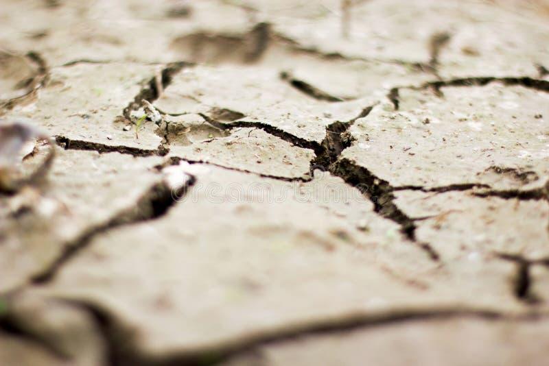 La macro terre sèche cracky à la ferme de riz photographie stock