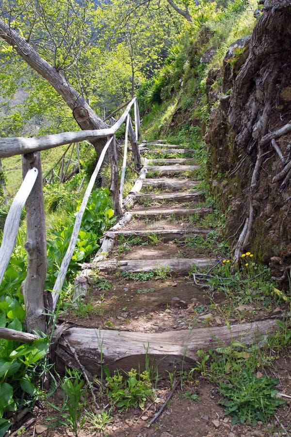La Madère, vallée des nonnes, Curral DAS Freiras photo stock