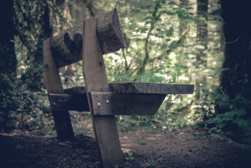 La madera construy? el banco p?blico visto en el borde de una ?rea arbolada imagenes de archivo